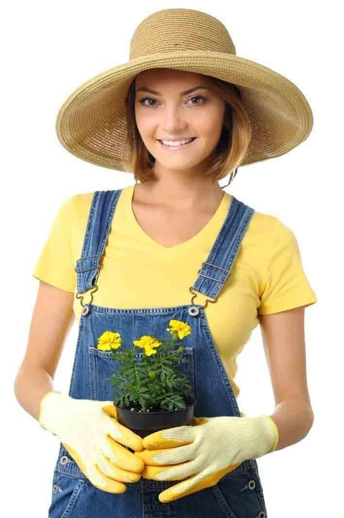 Gardening Work Gloves And Safety Wear For Sale Palmflex