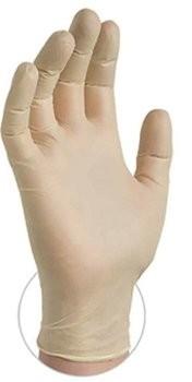 Ammex Stretch 5 Mil Vinyl Exam Powder Free Gloves - VSPF4